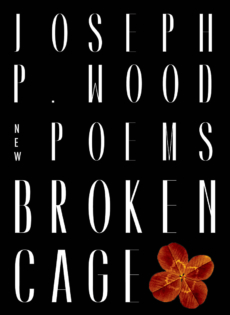 Broken Cage, by Joseph P Wood